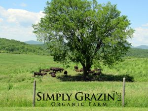 Simply Grazin' farms