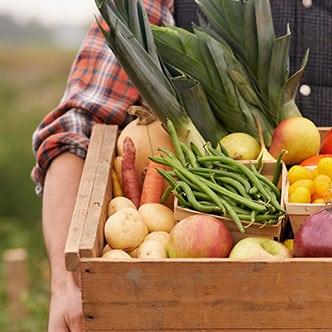 fresh produce available
